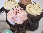 Chocolate Cupcake Variety Pack- Strawberry, Hazelnut, Chocolate, Vanilla Bean